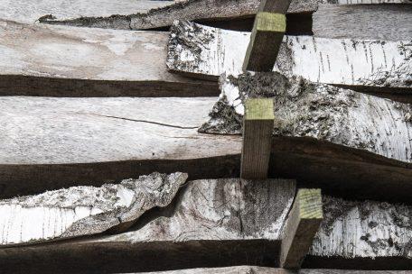 Stock timber Birch
