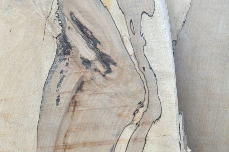 Stock Timber spalted beech